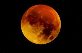 moon-963926_1920.jpg