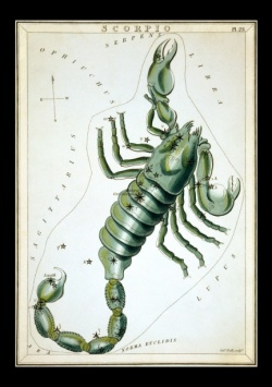 Scorpio Full Moon 5.jpg