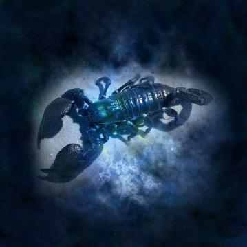 horoscope-644864_1920.jpg